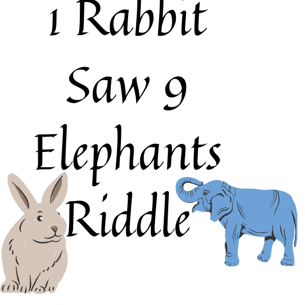 1 Rabbit Saw 9 Elephants